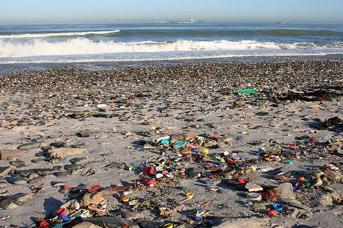 Hình ảnh ô nhiễm môi trường nước biển