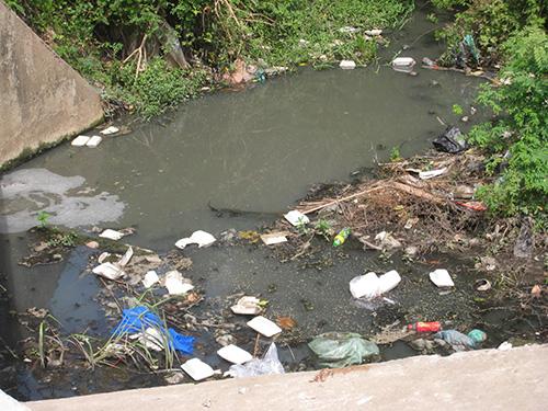 Hình ảnh ô nhiễm môi trường nước do bị nhiễm kim loại nặng