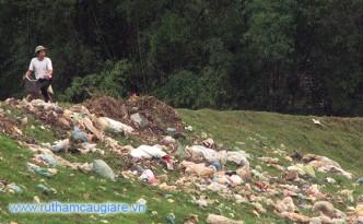 Rác thải nông nghiệp gây ô nhiễm môi trường nông thôn